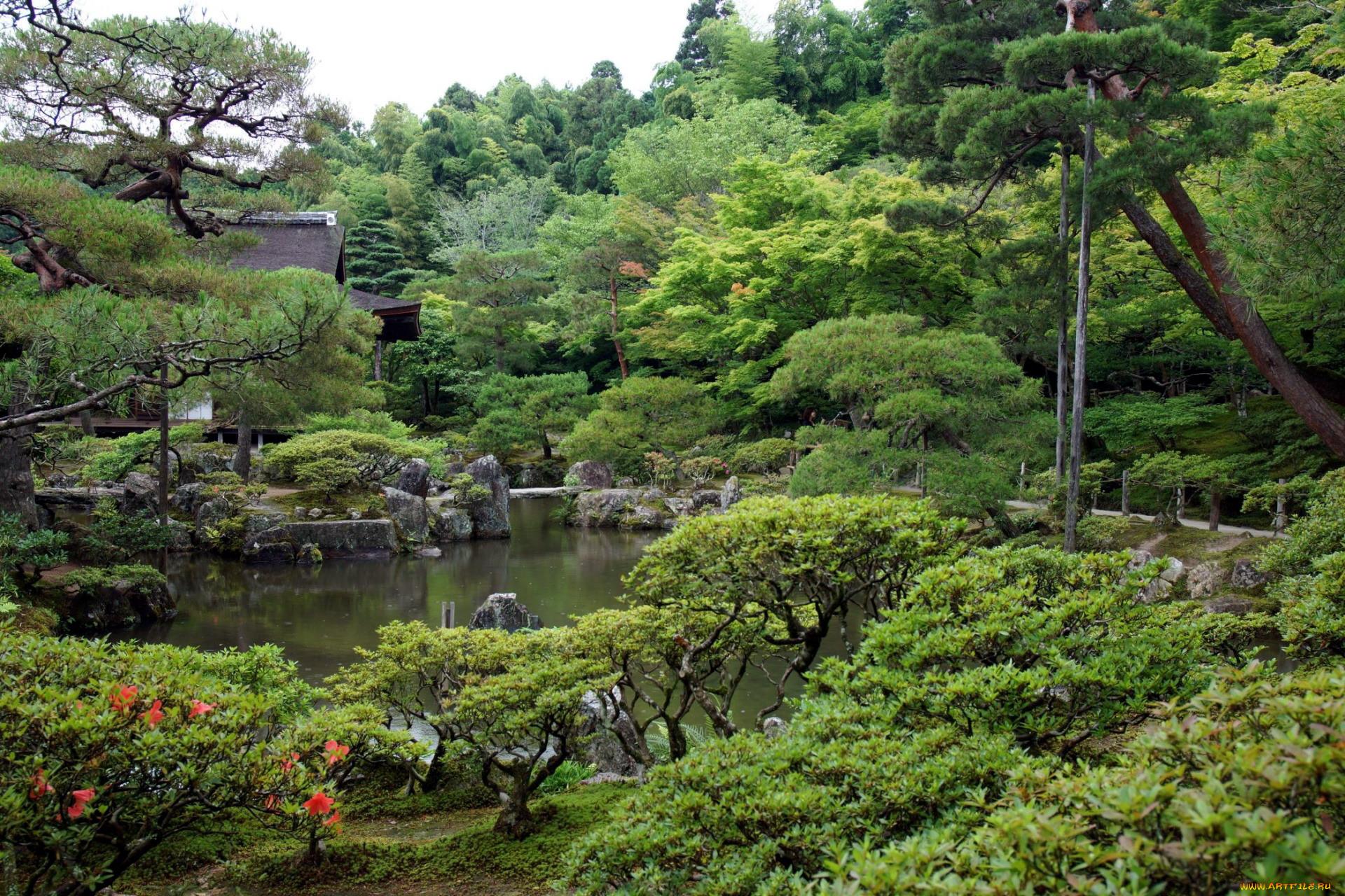 Парк в японии картинки